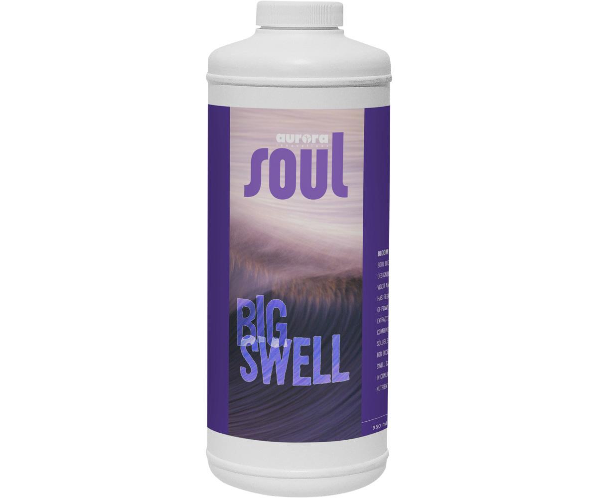Soul Big Swell Qt