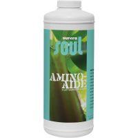 Soul Amino Aide Qt