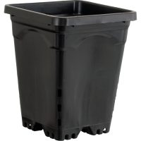 "6""x6"" Square Black Pot, 8"" Tall, 50 per case"