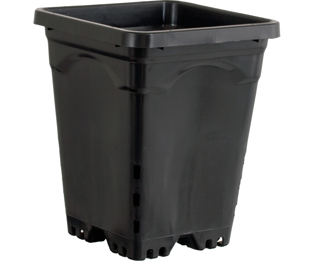 "7""x7"" Square Black Pot 9"" Tall, 50 per case"
