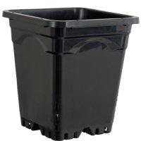 "9""x9"" Square Black Pot 10"" Tall, 24 per case"