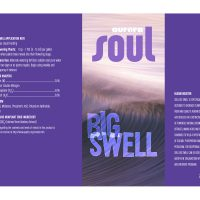 Soul Big Swell 15 Gal