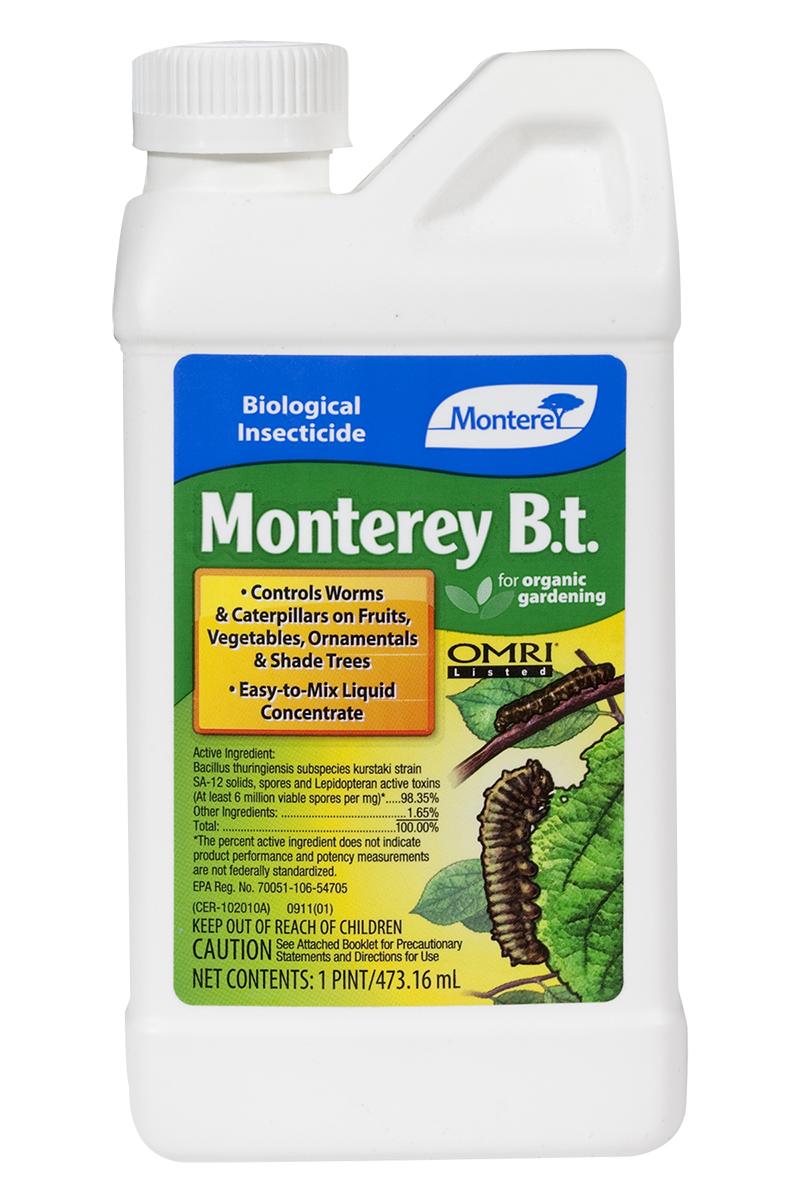Monterey B.t., Pt