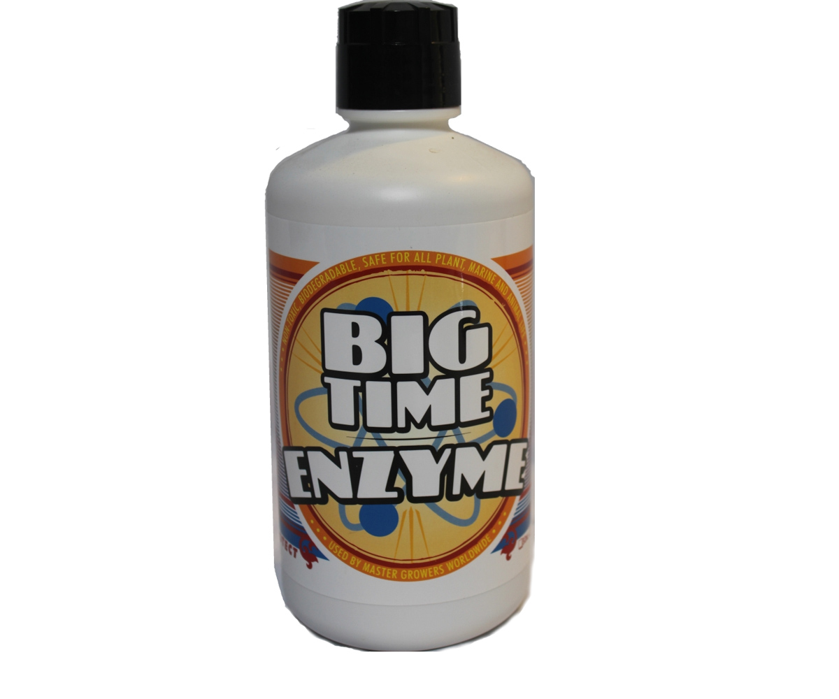 Big Time Enzyme Qt (16/cs)