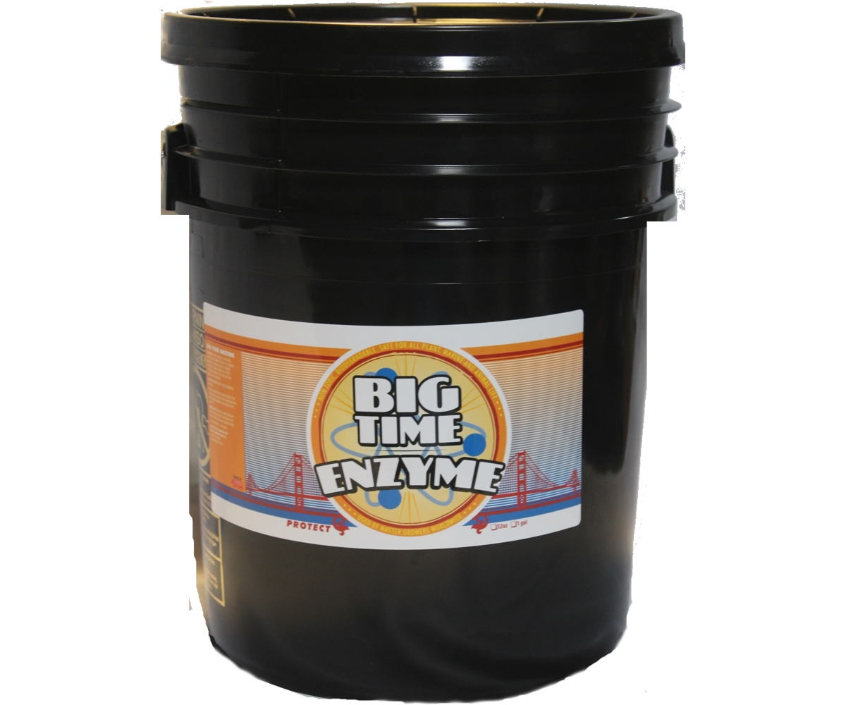 Big Time Enzyme 5 Gal