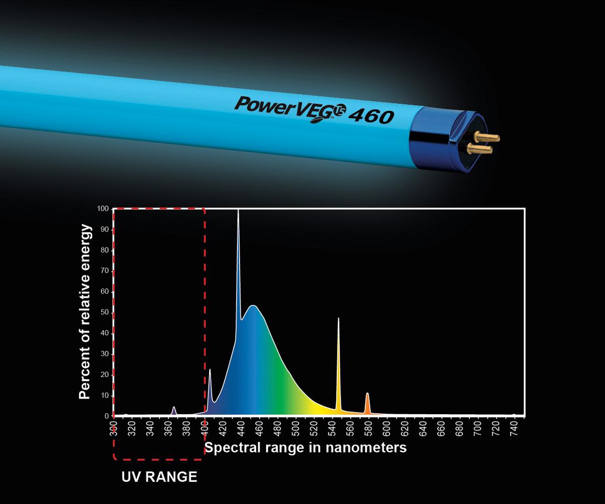 PowerVEG T5 2' 460 Blue (24/cs)
