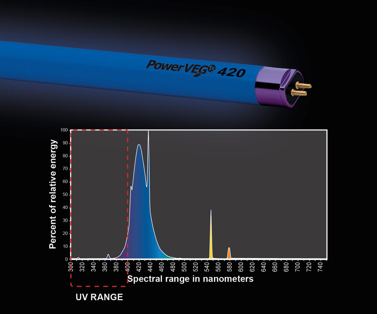 PowerVEG T5 4' 420 Blue (24/cs)