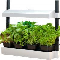 Micro Grow Light Garden White (1/ea)