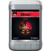 Bloom 6 Gallon