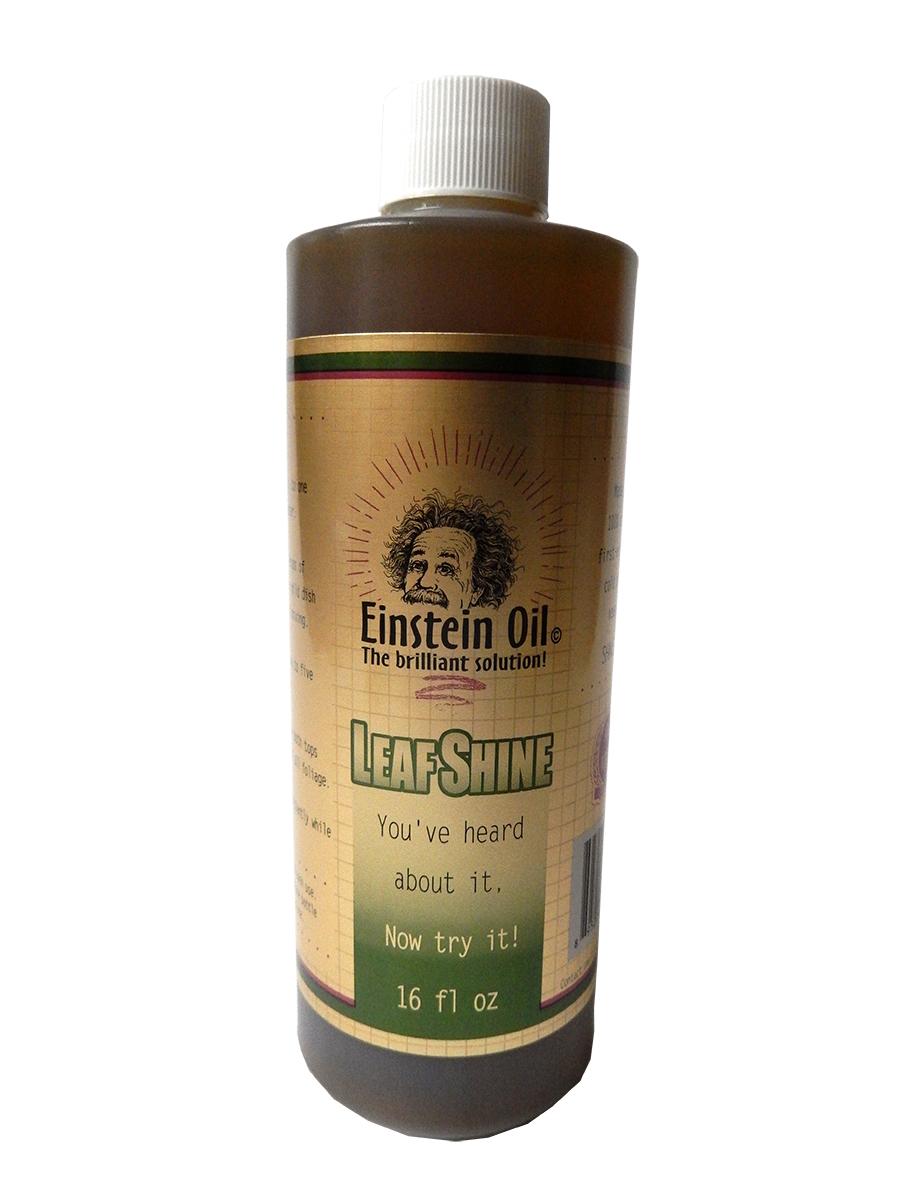 Einstein Oil, 16 oz