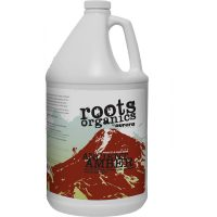 Roots Ancient Amber 1 gal