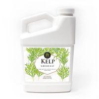 Age Old Kelp 32 oz, 12/cs