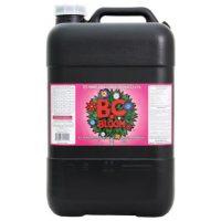 B.C. Bloom, 1000 L