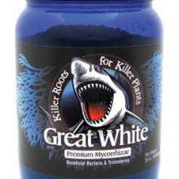 Great White 32 oz.