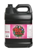 B.C. Bloom, 10 lt.
