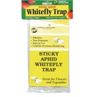 Sticky Aphid Whitefly Trap 3/Pack (1 = 24/Cs)