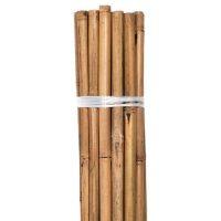 Grower's Edge Natural Bamboo 6 ft Bulk (50/Pack)